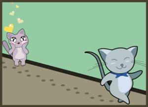 Кошка смотрит влюбленным взглядом на кота